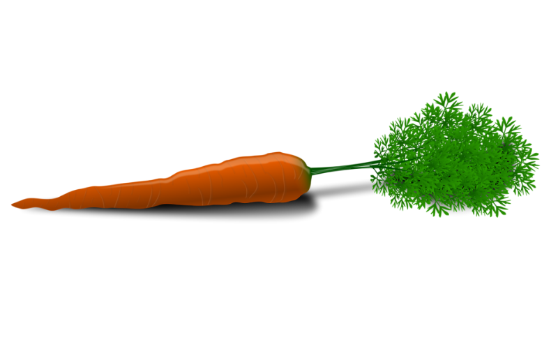 Do You Know What your Carrot Looks Like